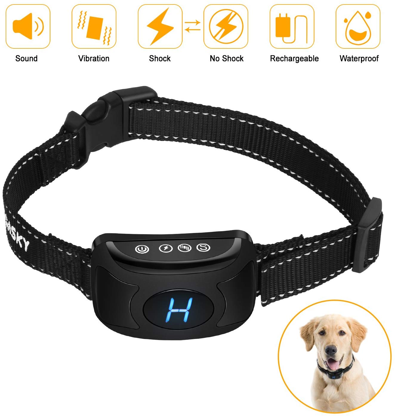 Gasky Bark Collar Review