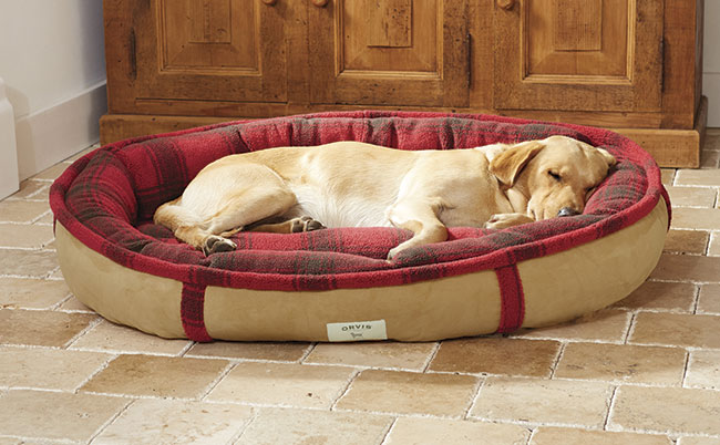 Orvis Dog Beds